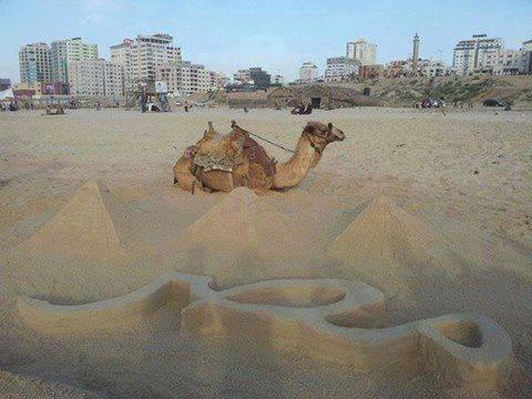 غزة بتعاكس مصر , ومصر ولا على بالها وتقلانة :) http://t.co/zjHnMlkALa