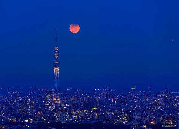 さきほど東京で撮影した月食の状態で昇る月です。 この神秘的な光景はわずか数分間しか見られませんでした。 http://t.co/WNtERdFRtu