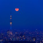 Lunar eclipse over Tokyo, shot by @KAGAYA_11949 https://t.co/5L4kV42W5x