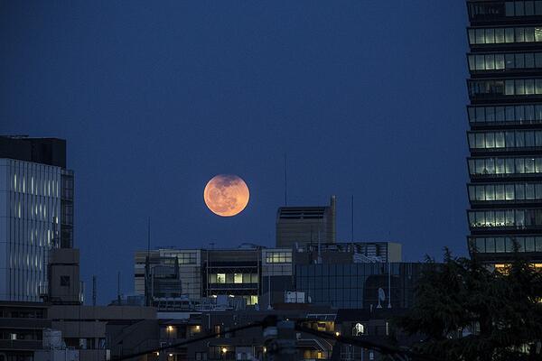 今日は満月だけど月食だったので上の方がちょっと欠けている月が昇ってきた。 http://t.co/TmnMsEJolU