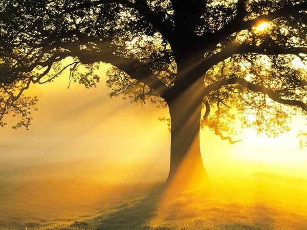 "#Peaceful #BreathTaking RT @CordeiroRick ""@ebubekiryaman http://t.co/pR19m2gGNo"""