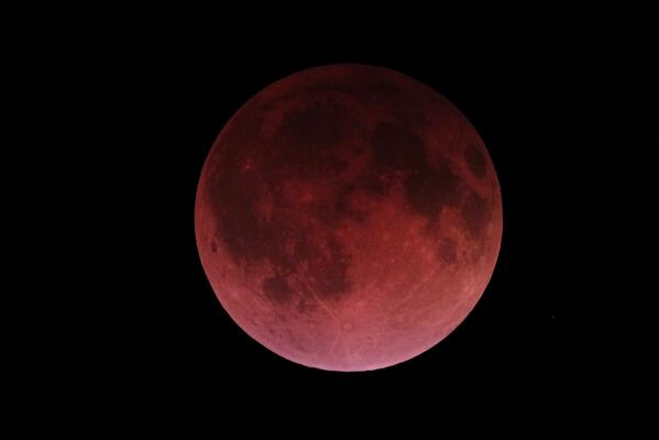 If you missed the #BloodMoon last night, @Spacedotcom has some beautiful photos: http://t.co/6vGz0m0K9k http://t.co/nNF2zDRgqJ