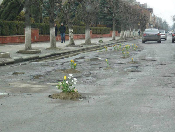 Someone planted tulips in potholes in Kolomiya, Ukraine as a protest against road conditions. I like this idea! http://t.co/tTwZW23I2B