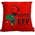 RT @FloydShivambu: A vote for the EFF is a Cushion against poverty and suffering. Do it for the Future! #VoteEFF. http://t.co/bs5PMntS4C