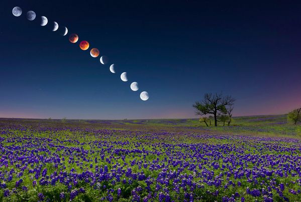 WOW RT @kalanigordon: Ridiculous shot from @lifethroughmike of the moon last night over Texas. http://t.co/KJ2AAVXb2q http://t.co/JbmppDbJ38