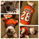 RT @SmittyBarstool: Introducing Lord Stanley Pup The official dog for the #Flyers playoff run. #Boss http://t.co/ZL0FzZd98g via @MartyBuckley