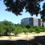 #PaloAlto Housing Corporation nears sale of controversial Maybell site: http://t.co/d2TiVjbZvo http://t.co/spDXMoENQb