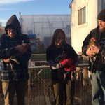 Chickens in the classroom? Tune in to @9NEWS on channel 20 to learn about the @CUDenver urban farm! http://t.co/S75uCIVJAL