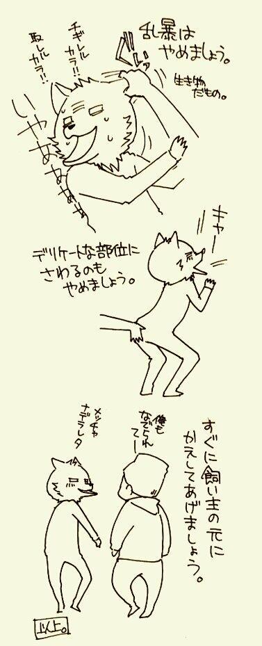 【犬との接し方】街中でよそのワンコと触れ合う場合2 http://t.co/jaXkqgJGnn