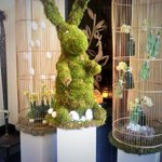 Look whos hopped into our lobby for a special visit! #easter @McQueensFlorist http://t.co/pEbxbuR2b2