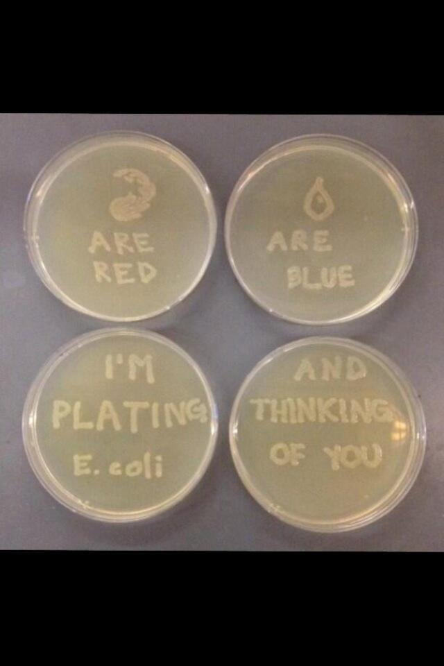 This year, tell them you love them with E.coli. #NerdLove http://t.co/wNS1EIk6ao