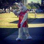 Most skillful easter bunny Ive seen. @bmatera32 @goldfmgc http://t.co/9IA0X4Zrew