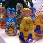 The Easter Bunny dropped off a special delivery @AcorppGroup this morning. http://t.co/sDmgvctl3E