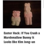 RT @gmorgan_SA: @GarethCliff Korean Easter bunny http://t.co/MkM2HSm5ca