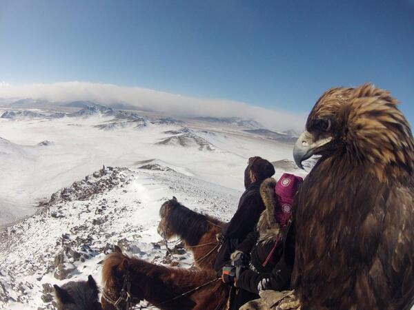 Photo of the Day! @eaglefalconer Lauren McGough hunts with her golden eagle in Mongolia. #GoPro #Adventure http://t.co/7jiw2bNTL7