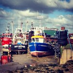RT @Angel_head: Leigh on sea boats this morning ....lovely walk down there #loveleigh http://t.co/2ItUXjwUyD