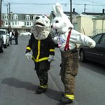 The Easter Bunny and Sparky the Dalmatian walking together delivery food to York City residents. @ydrcom http://t.co/7xonTQKWB1