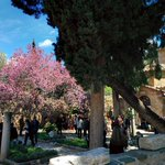#kaisariani #monastery #easter #greece http://t.co/Ef0anq9EQ7