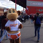 Nuts is currently the star of the show at Ashton Gate today! @bcfctweets @Scotty_Murray #IITB http://t.co/fLbulGWPOU