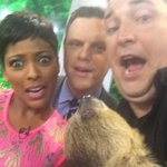 """@TODAYshow: Heres the baby sloth selfie with @tamronhall, @WillieGeist and @JeffAnimalGuy! http://t.co/YNTa9ohEhi"" @321friendSHIP"