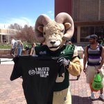 RT @CSUAlumni: CAM bleeds green and gold; do you? http:http://t.co/XYiURdZaUS #ILoveCSU http://t.co/Hcq6YN9f2m