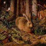 Easter Bunny rests up before the big day (Hans Hoffmann, about 1585) #Easter cc @DamienKempf http://t.co/iIEM5bfWNp