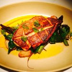RT @StarsRooftop: Pan Seared Snapper,Carrot Puree,Asparagus,Orange Vinaigrette #special #Charleston #holycityeats #chseats @jodimaio http://t.co/jUAc4pXGCJ
