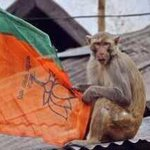 Any similarity between #BabaBlackDev campaign for BJP and this picture? http://t.co/habDmEefPH
