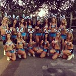 #shire @Cronulla_Sharks Our gorgeous Bunnie Mermaids @Sharks_Mermaids #UpUpCronulla http://t.co/RWVtrAG4i7