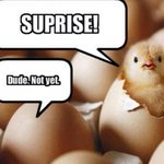 RT @sassarina: One more sleep till #Easter Sunday lil chickpeas.... http://t.co/MRMV99LEAz