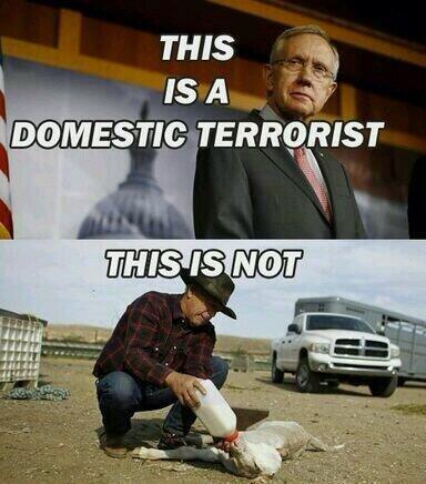 Domestic Terrorist!     #BundyRanch #tcot via @DeltaDoggie http://t.co/McPmUhlOPD