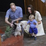 Prince George meets a Bilby, named George, @tarongazoo today. http://t.co/CNyTtgkUMV