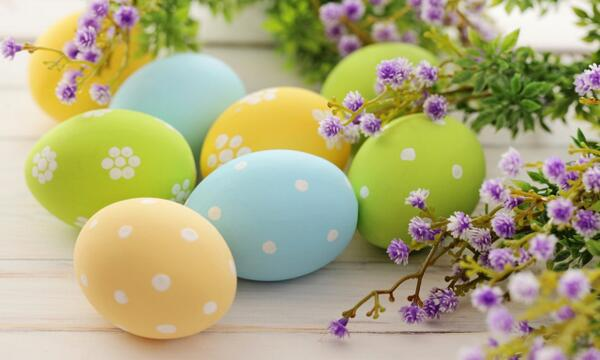 Happy Easter! http://t.co/A5g3R2AK8W