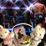 Easter service - check Easter bunny -check and now watching another airing of #UFConFOX11 @fightmatch @RdosAnjosMMA http://t.co/JrwO2yQgxJ