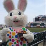 Easter Bunny ready for 1:05 game. Treats for kids. Also: Kids run bases after the game. http://t.co/XjtubT5lkT