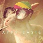 RT @MAJORLAZER: RASTA BUNNY WISHES YOU A HAPPY EASTER 420! http://t.co/FScpYHezVv