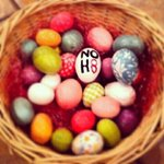 RT @bouska: Regardless of your religion or beliefs, I hope everyone had a #HappyEaster! http://t.co/2QXvI6ZcR7