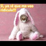 RT @EritoMC: Felices Pascuas a Todos!! ;) http://t.co/Q7IGFbKvsz