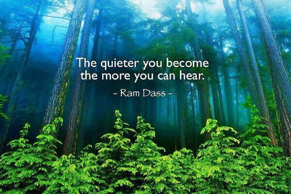 """°RT @KariJoys """"The quieter you become the more you can hear"""" ~Ram Dass http://t.co/XlRHAgPiBi @CygnusBooks @BabaRamDass"""