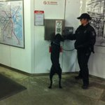 #MBTA Transit Police K-9 teams are checking stations #BostonMarathon #seesay http://t.co/8VUw3YdInW