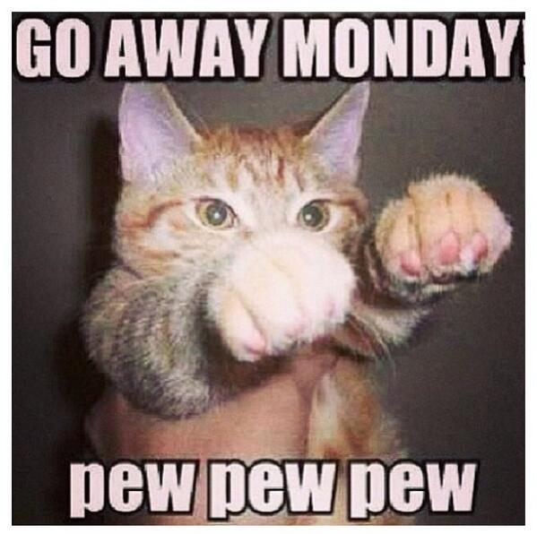 Have an amazing Monday!!! LOL