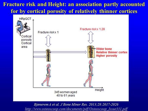 #Fracture risk and #height: an association partly accounted for by cortical porosity of relatively thinner cortices http://t.co/qbO1SBxw6s