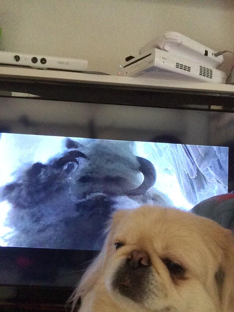 Wampa took a selfie with the Wampa. http://t.co/vHuAh2Fhz7