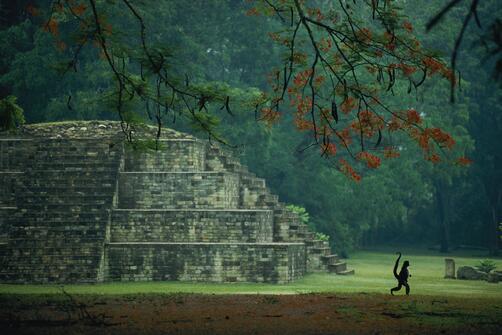 This li'l monkey is just runnin' around the Maya site of Copan, Honduras. Pic by Kenneth Garrett. http://t.co/PbTKlPH53p