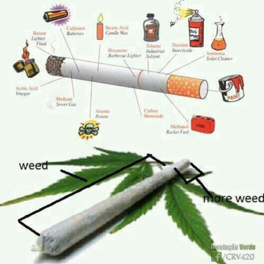 Mi na go a jail gi Ganja no more,,, Legalize the herb,,to heal the NATION!!! http://t.co/ROSA0lIo8s