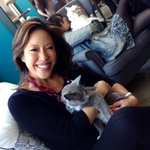 Meow! Even though shes allergic she powered through! @HsuTV checks out #NYCs #CatCafe .Her story @ 5 @CBSNewYork http://t.co/CzASQkcU4k
