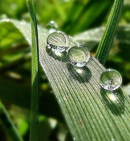 Just a drop of #kindness can make a big difference in someone's life http://t.co/z6g8G2U4h2 | @PardueSuzanne @tiwmusic @arkarthick