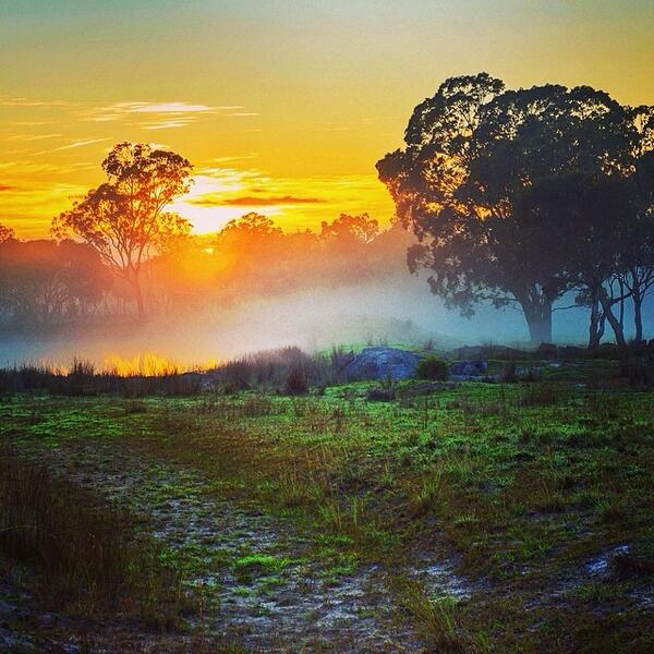 Watching the morning fog roll in with the sunrise in Stanthorpe, Queensland. Great shot by @laurenepbath! (via IG) http://t.co/Y9ZFqbgNcg