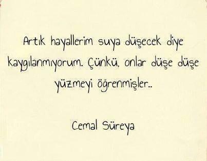 RT @tulinfb: Cemal Süreyya. http://t.co/8BTTjL4Foa