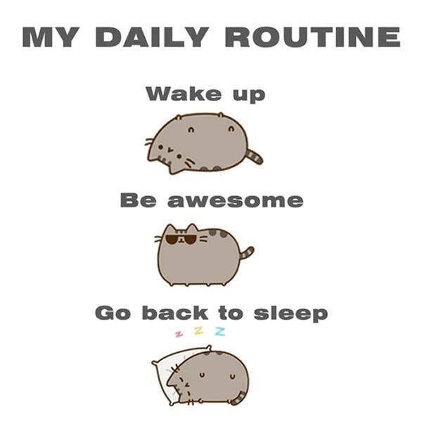 My daily routine http://t.co/GMgxp08uKv